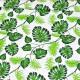 Zelené palmové listy na bílém podkladě vzor 336