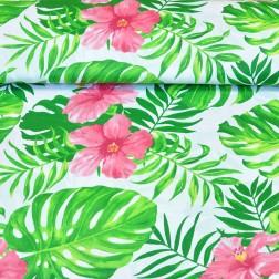 Havajské květy mezi listy