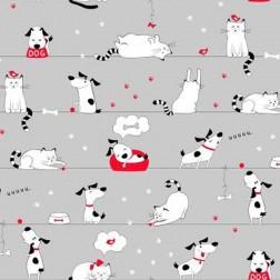 Pejsci a kočičky s červenou miskou