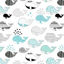 Velryby tyrkysové a černé
